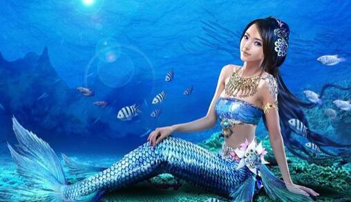 梦见美人鱼