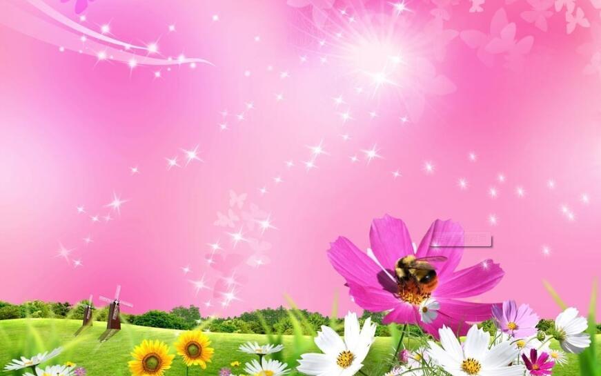 向日葵星星点点蜜蜂梦幻图片展示大全